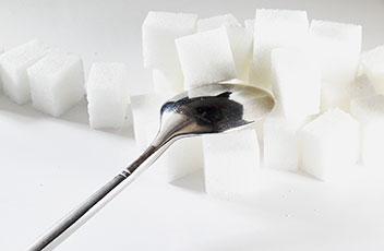 Zuckerkrankheit bei Haustieren